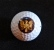 Eagle Pipers' golf ball